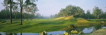 Stream on a golf course, Haile Plantation, Gainesville, Florida, USA by Panoramic Images