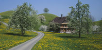 Switzerland, Zug, road by Panoramic Images