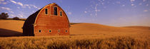 Old barn in a wheat field, Palouse, Whitman County, Washington State, USA von Panoramic Images