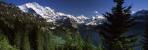 Wengen, Bernese Oberland, Berne Canton, Switzerland von Panoramic Images