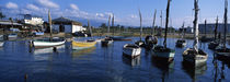 Boats in the water, Cien Fuegos, Cuba by Panoramic Images