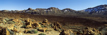 Tenerife, Canary Islands, Spain von Panoramic Images
