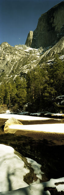 Yosemite National Park, Mariposa County, California, USA von Panoramic Images