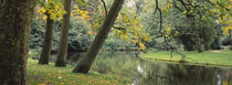 Trees near a pond in a park, Vondelpark, Amsterdam, Netherlands by Panoramic Images