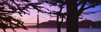 Suspension Bridge Over Water, Golden Gate Bridge, San Francisco, California, USA by Panoramic Images