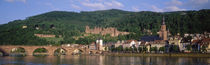 Germany, Heidelberg, Neckar River by Panoramic Images