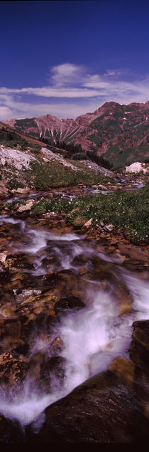Rock formations in a creek, Crested Butte, Gunnison County, Colorado, USA von Panoramic Images
