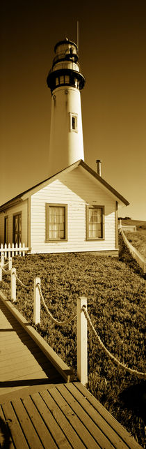 Building in front of a lighthouse, Pigeon Point Lighthouse, California, USA von Panoramic Images