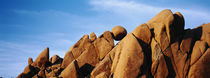 Close-up of rocks, Mojave Desert, Joshua Tree National Monument, California, USA by Panoramic Images