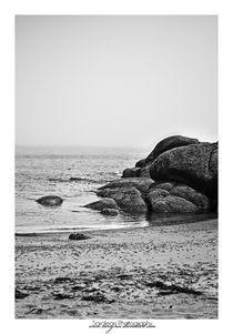 Beached von sarajean-photography