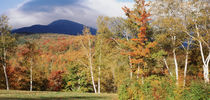 White Mountain National Forest, Bartlett, New Hampshire, USA von Panoramic Images