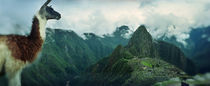 Machu Picchu, Cusco Region, Peru by Panoramic Images