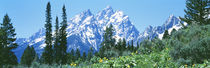 Grand Teton National Park WY USA by Panoramic Images