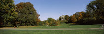 Autumnal trees in a park, English Garden, Munich, Bavaria, Germany by Panoramic Images