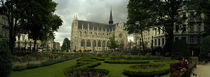 Garden in a church, Eglise Notre-Dame du Sablon, Brussels, Belgium von Panoramic Images