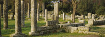 Ruins of columns, Ancient Olympia, Peloponnese, Greece by Panoramic Images