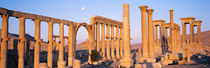 Ruins, Palmyra, Syria by Panoramic Images