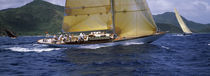 Yacht racing in the sea, Antigua, Antigua and Barbuda by Panoramic Images