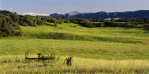 Agricultural equipment in a field, Pikes Peak, Larkspur, Colorado, USA by Panoramic Images