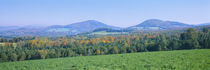 Trees with a mountain range in the background, Northeast Kingdom, Vermont, USA von Panoramic Images