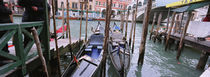 Gondolas moored near a bridge, Rialto Bridge, Grand Canal, Venice, Italy by Panoramic Images