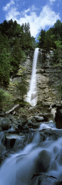 Waterfall in a forest, Tatschbachfall, Engelberg, Obwalden Canton, Switzerland by Panoramic Images