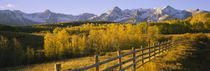 San Juan Mountains, Colorado, USA by Panoramic Images