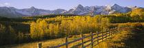San Juan Mountains, Colorado, USA von Panoramic Images