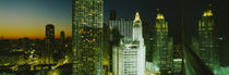 Night Chicago IL USA by Panoramic Images