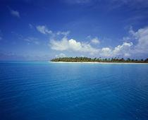 Island in the ocean, Rangiroa, Tuamotu Archipelago, French Polynesia by Panoramic Images