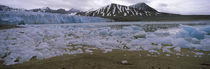 Ice floes in the sea with a glacier in the background, Norway by Panoramic Images