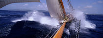 Yacht Race, Caribbean by Panoramic Images