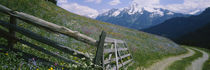 Wooden fence in a field, Tirol, Austria by Panoramic Images