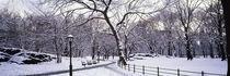 Manhattan, New York City, New York State, USA von Panoramic Images
