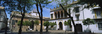 Trees in front of buildings, Convento San Leandro, Plaza Pilatos, Seville, Spain von Panoramic Images