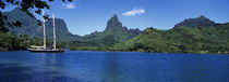 Sailboats Sailing In The Ocean, Opunohu Bay, Moorea, French Polynesia von Panoramic Images
