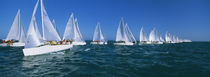 Sailboat racing in the ocean, Key West, Florida, USA by Panoramic Images