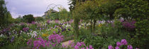 Flowers In A Garden, Foundation Claude Monet, Giverny, France by Panoramic Images