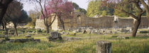 Ruins of a building, Ancient Olympia, Peloponnese, Greece von Panoramic Images