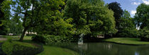 Trees in a park, Queen Astrid Park, Bruges, West Flanders, Belgium by Panoramic Images