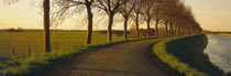 Winding Road, Trees, Oudendijk, Netherlands by Panoramic Images