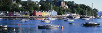 Boats docked at a harbor, Tobermory, Isle of Mull, Scotland von Panoramic Images