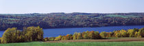 Trees at the lakeside, Owasco Lake, Finger Lakes, New York State, USA by Panoramic Images