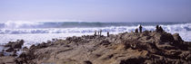 Waves in the sea, Carmel, Monterey County, California, USA von Panoramic Images