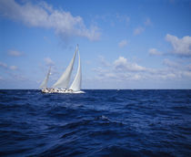 Sailboat in the sea, Bahamas by Panoramic Images