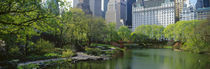 Central Park, Manhattan, New York City, New York State, USA by Panoramic Images