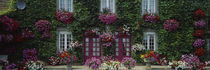 Flowers Breton Home Brittany France by Panoramic Images
