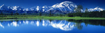 Panorama Print - Mt. McKinley und Wonder Lake Denali Nationalpark AK von Panoramic Images