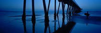 Silhouette of a pier, Hermosa Beach Pier, Hermosa Beach, California, USA by Panoramic Images
