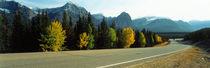Road Alberta Canada von Panoramic Images